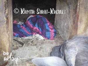 Ramita Shahi-Rachuli-inside-the-cowshed