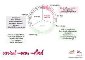 Cervical Mucus Method
