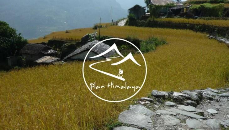 Plan Himalaya