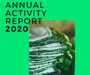Annual Activity Report 2020