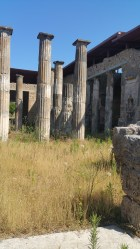 Columns are everywhere
