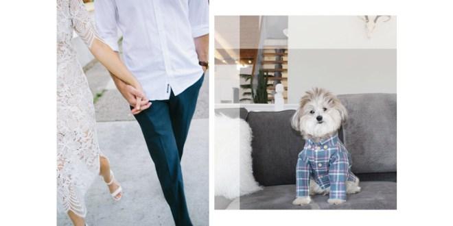 dog threads family