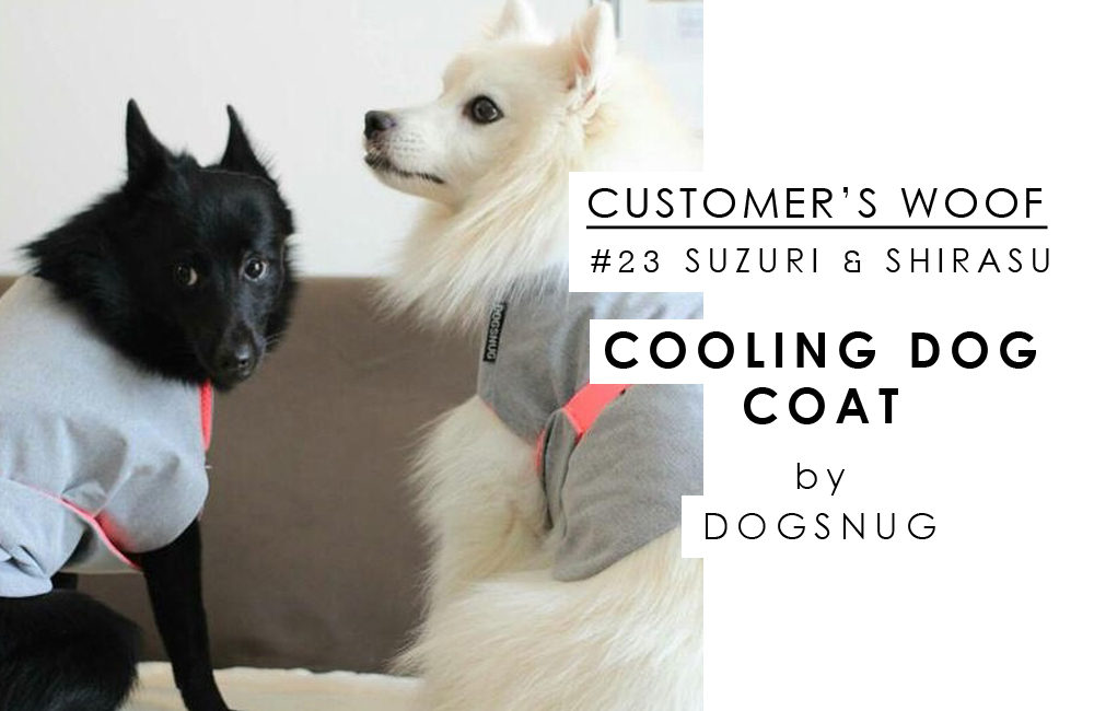 お客さまの声#23 DOGSNUG with SUZURI and SHIRASU / BEAST COAST