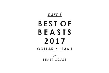 BEST OF BEASTS 2017 - わんこの日用品ランキング(パート1:首輪&リード編)