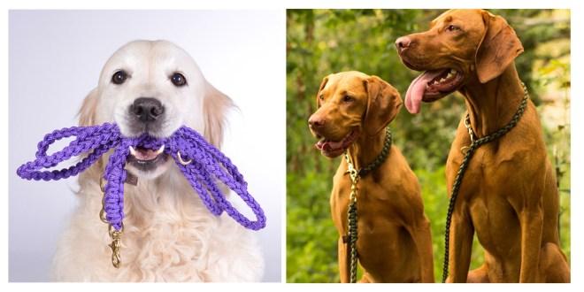 オーストリア生まれの愛犬用リードメーカー「MOLLY AND STICH(モリーアンドスティッチ)