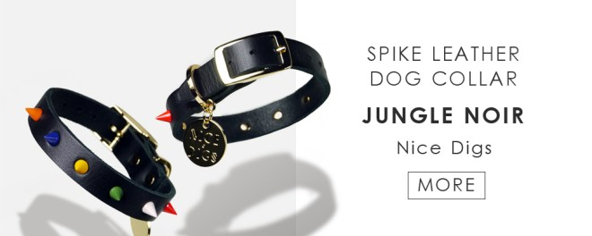 Nice digs - Spike leather dog collar Jungle noir