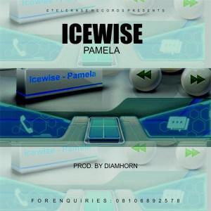"[Music] Icewise -""Pamela"" (prod. Diamhorn) 4"