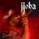 "Slimcase – ""Ijoba"" 30"