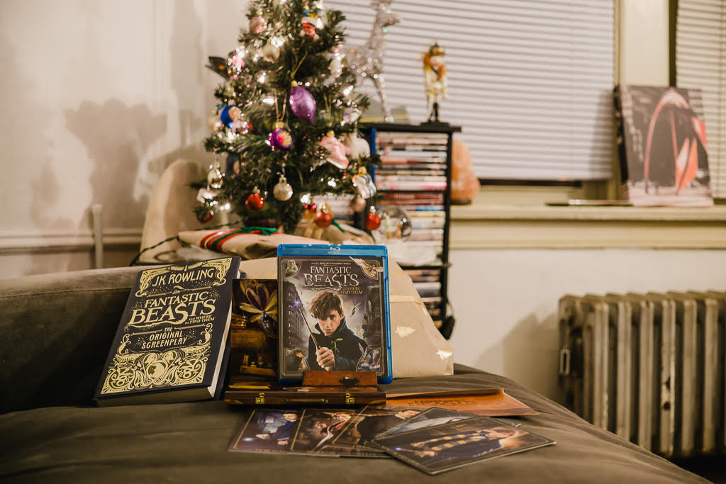 Fantastic Beasts gift set