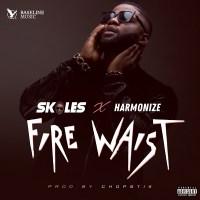 Skales ft Harmonize - Fire Waist