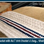 Crochet With Me!! Winter 2016 Crochet-A-Long… Week 2 Let The Stitching Begin!!