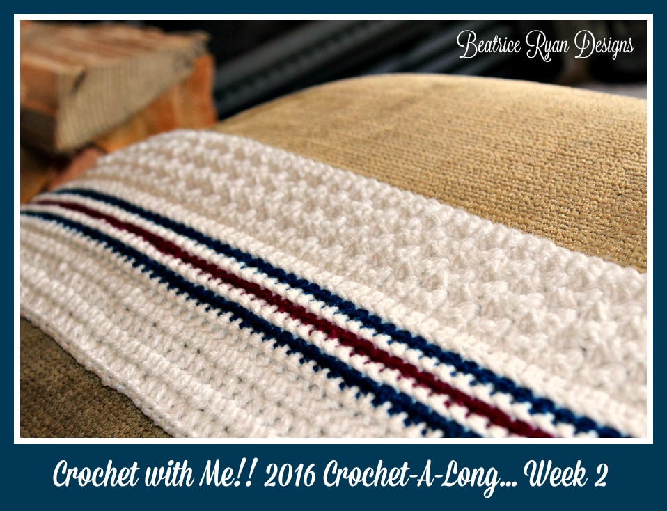 Crochet with Me 2016 week 2