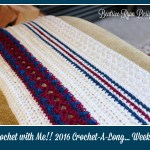 Crochet With Me!! Winter 2016 Crochet A Long… Week 3!!!
