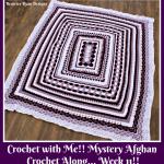 Crochet with Me!! Mystery Afghan Crochet Along… Week 11!!