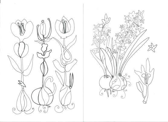 colouringflowers