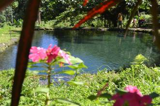 Saay Cold Spring, Camiguin