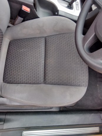 Before Upholstery Cleaning Riverland