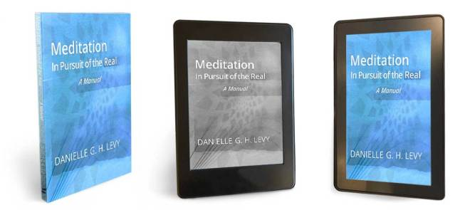 meditation in pursuit of the real in PDF, e-reader and tablet version