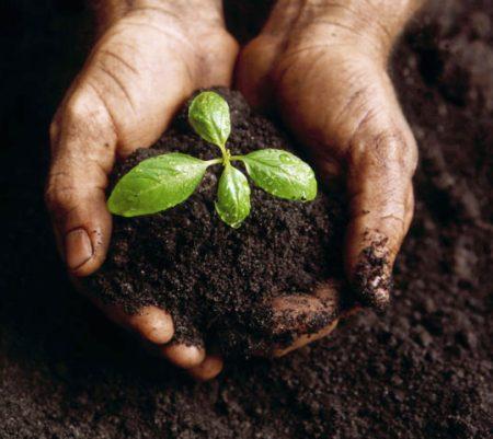 Faire du compost, pour réduire nos déchets