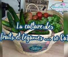 La culture des fruits et légumes …so CuTE