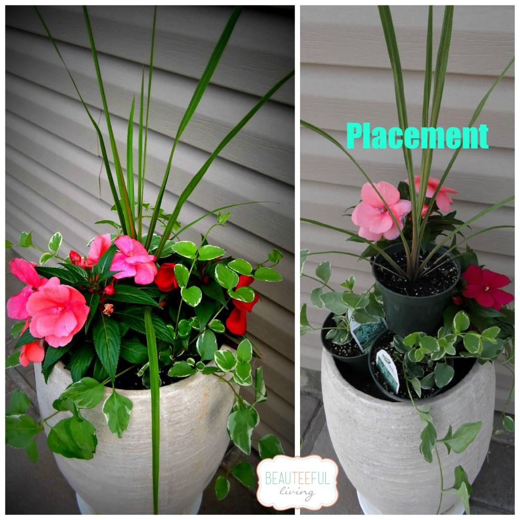 Plantercollage