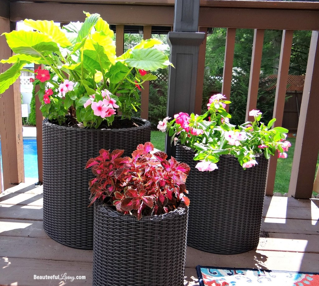 Keter Wicker Resin Planters - Beauteeful Living