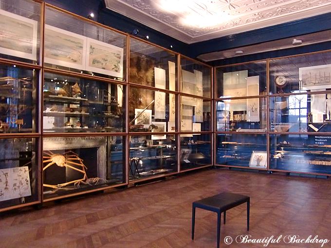 siebold_museum10