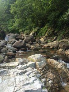 225x300 - 新潟県湯沢町、清津川支流の「かっさ川渓流釣り」