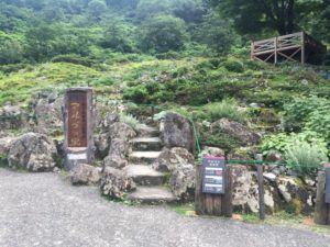 IMG 6654 300x225 - 湯沢高原 夏季シーズン