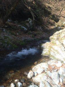 225x300 - 荒川支流の「入間川で渓流釣り」