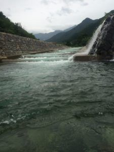 IMG 6304 e1463209045394 225x300 - 新潟県湯沢町で人気の魚野川渓流釣り