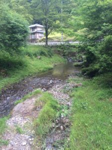 image 12 e1470735710552 225x300 - 巾着田で有名な高麗川で渓流釣り