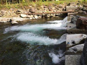 image 3 300x225 - 秩父の中津川で渓流釣り