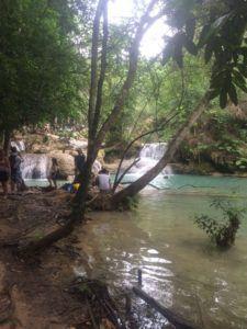 img 8521 225x300 - 死ぬ前までに行きたい絶景地、ラオスの「クアンシーの滝」