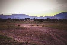 moniquedecaro_namibia-4568