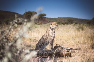 moniquedecaro_namibia-8339