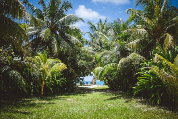 moniquedecaro-5804-denis-private-island
