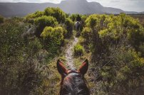 horseriding-south-africa-moniquedecaro