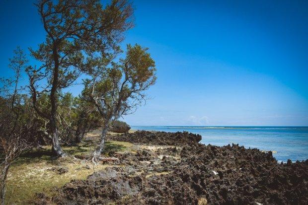 moniquedecaro-kenya-chale-island-102