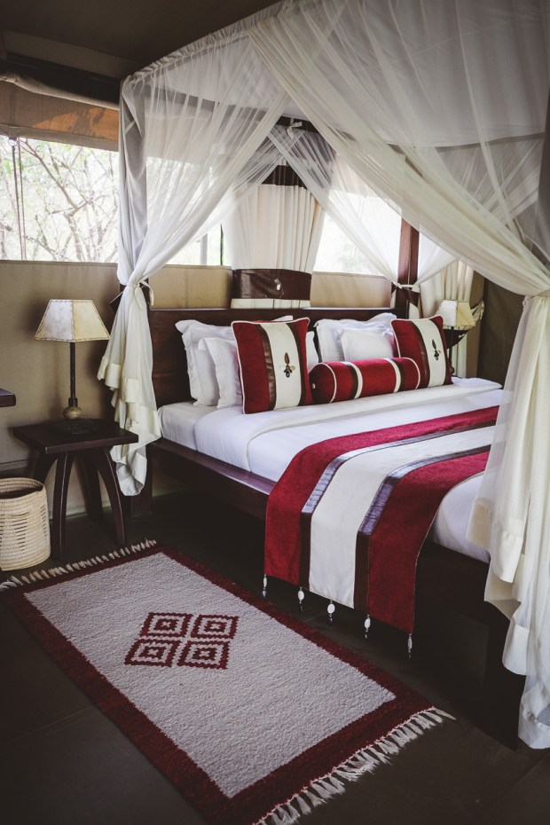 moniquedecaro-mara-bush-camp-kenia-3442
