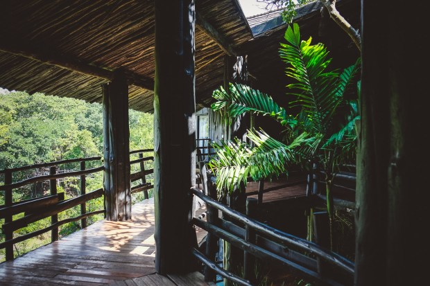 moniquedecaro-shimba-hills-7036