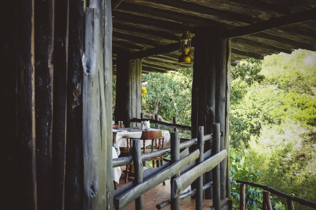 moniquedecaro-shimba-hills-7109