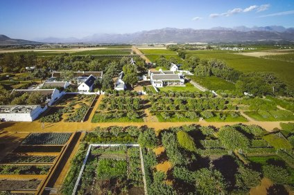 moniquedecaro_babylonstoren_south_africa