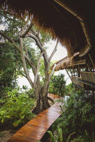 moniquedecaro-cempedak_island-3890