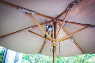moniquedecaro-the-residence-zanzibar-0342