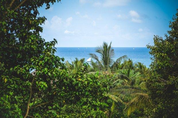 Unsere Tipps für einen romantischen Urlaub auf Sansibar - Romantik, Luxus & Kultur