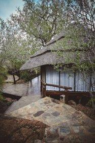 moniquedecaro-madikwe-hills-7586