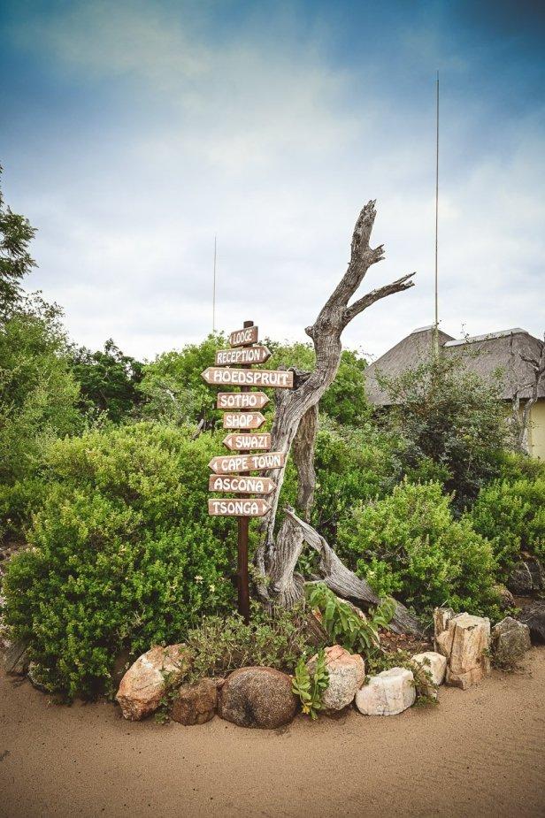 moniquedecaro-makumu-south-africa-2380