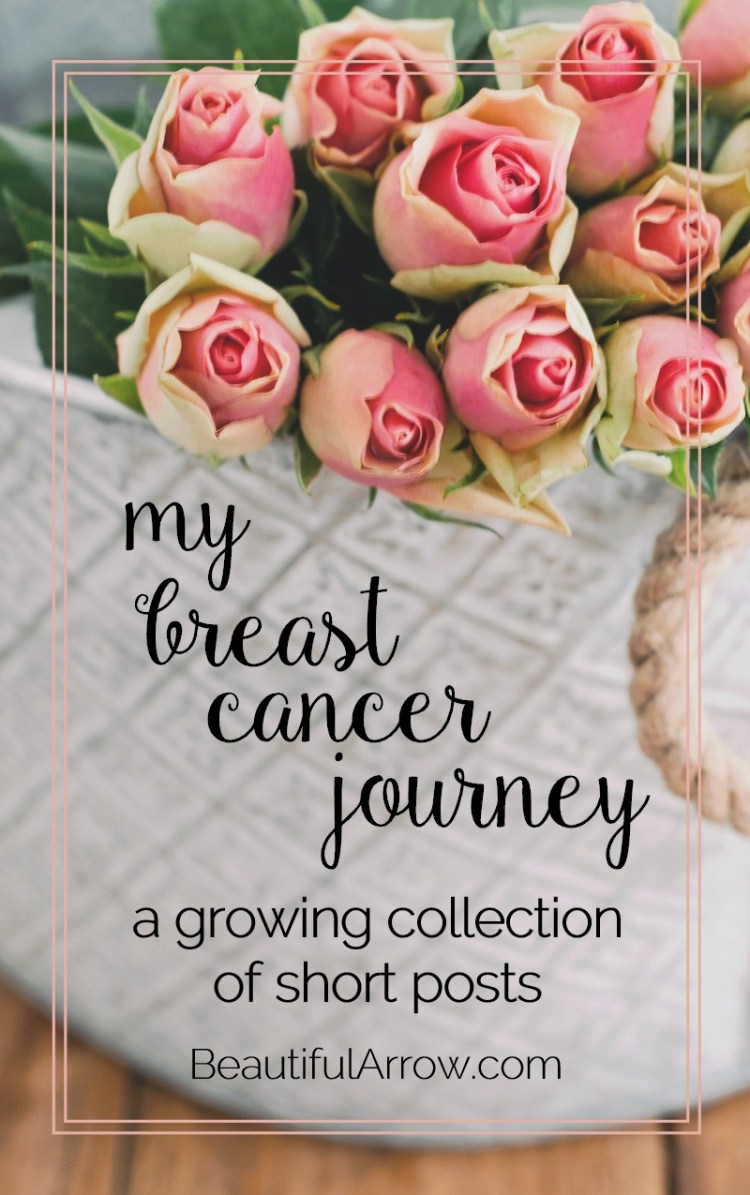 my various blog posts of my breast cancer journey
