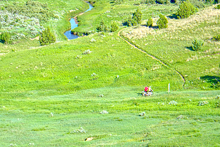Bikers in the green grass of the trail stop to look at a map.
